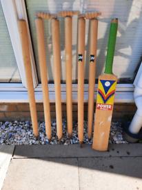Cricket stumps and bat