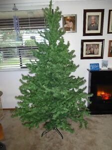 Christmass Tree (Richmond near Steveston) - $20