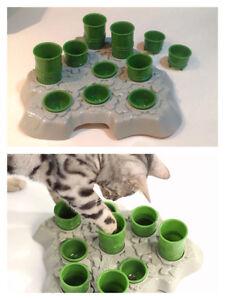 Jouets accessoires chat