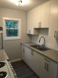 NEWLY UPGRADED PET FRIENDLY APARTMENTS AVAILABLE NOW!
