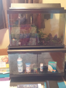 25-gallon fish tank with 2 fish, a stand and accessories