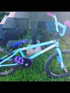 BMX with lots of customization 125 OBO