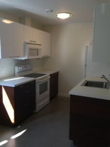 Quiet location - Modern one bedroom + den - all included