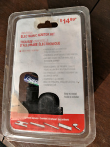Electric igniter for BBQ