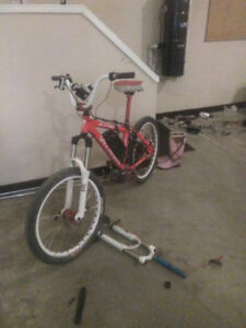 STOLEN electric specialized epic