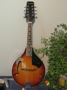 Mandolin with gig bag and book.