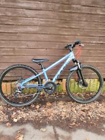 Custom Felt 24 mountain bike