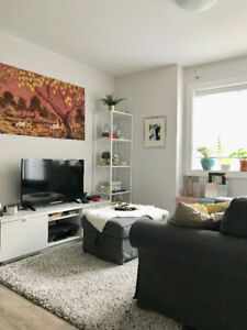 One Year Old Bright Cozy 1 Bedroom Basement Suite