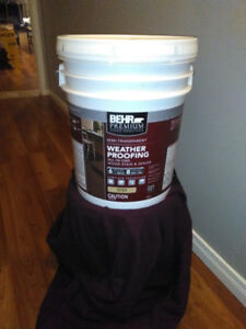 Stain From Behr