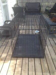 Kennel, leash, automatic water dish