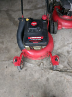 Lawnmower/Anything Small engine repair