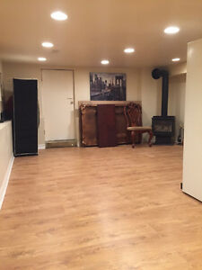 Basement just renovated, with windows, separate entrance.