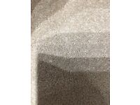 Fanfare Doeskin New Carpet Ab 3.92m x 4.00m Free Local Delivery