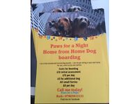 Home from home dog boarding and pet sitting service