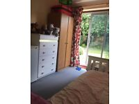 Botley, Nice room available from 1st September,