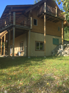 Shuswap Lake 85' beach front with Log Cabin