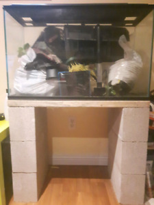 30 gal fish tank with stand.
