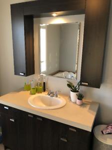 Comptoir, vanité de salle de bain