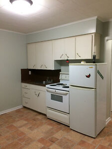Huge 2 bedroom apartment in Paradise