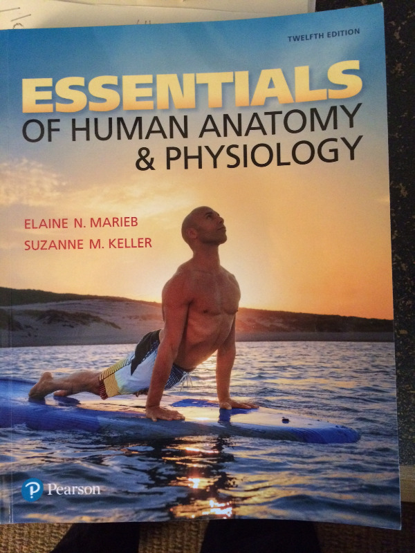 Essentials of Human Anatomy & Physiology (12th Edition) | Textbooks ...