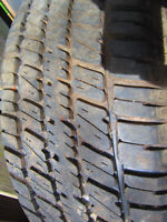 """Great for Spare. 15"""" Daytona Radial Tire.  * *  Only $25.00  * *"""