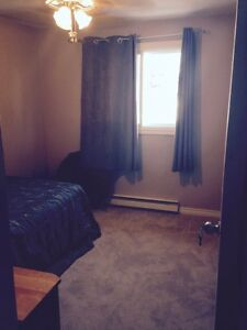 Quiet and clean town house on bus route, near 401, inclusive Cambridge Kitchener Area image 2