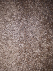 Taupe/Sand Colored Rug-New