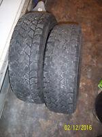 (2)  Winter tires  195/65R15