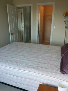 Master Bedroom for Rent available now Kingston Kingston Area image 8
