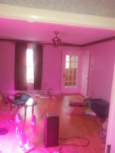 Two rooms in small house to rent. $350-450, open house sunday.