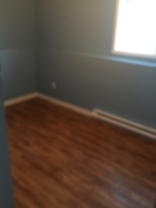 Spacious 2 bedroom Basement Apartment (Fowlers rd area)