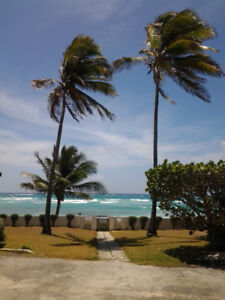 Barbados condo for rent