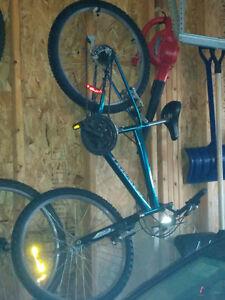 Boy 20 inch bike for sale