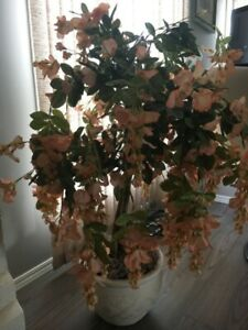 Ceramic Tree | Kijiji in Winnipeg  - Buy, Sell & Save with
