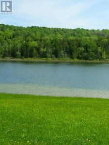 A Tranquil Oasis minutes from Lucknow Kitchener / Waterloo Kitchener Area image 6
