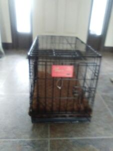 Dog Crate for Small Dog