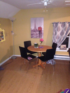 LARGE 1 BEDROOM APT DOWNTOWN WOLFVILLE, READY JUNE 1st