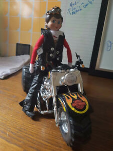 Harley trike with outfit