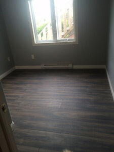 Newly renovated 2 bedroom apt. May consider pets