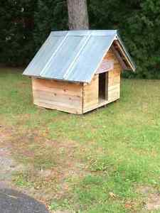 Niche isolée - Insulated dog house