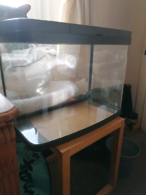 37 litre aquarium with buiot in LEDs and night light