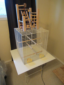 Bird Cages, Perch Stand and accessories