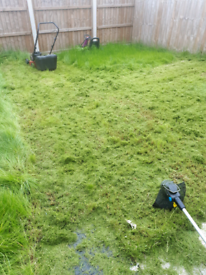 Gardener and odd jobs