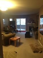 1-2 rooms for rent starting May 1
