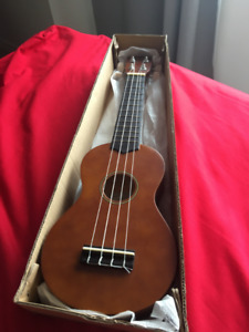21 Inch Strong Wind Ukulele Starter Kit