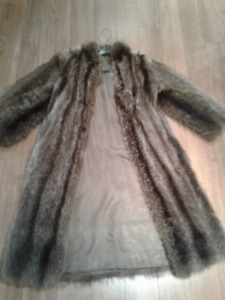 manteau de chat sauvage