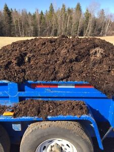 Well aged horse manure