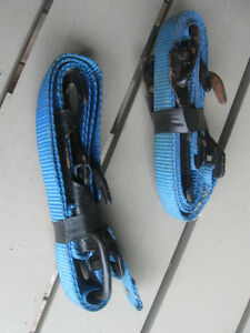 HEAVY-DUTY ONE-INCH-WIDE THICK NYLON TRUCK TIE-DOWN with HOOKS