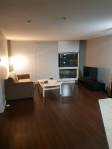 Shared one bedroom apartment (2-4 months)