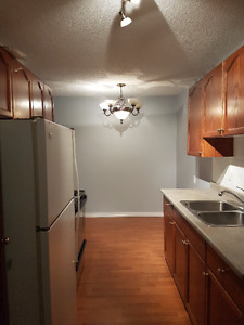 One Bedroom Condo in Oliver/Downtown